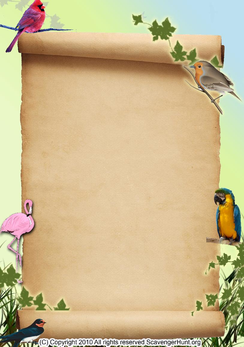 birds scavenger hunt background